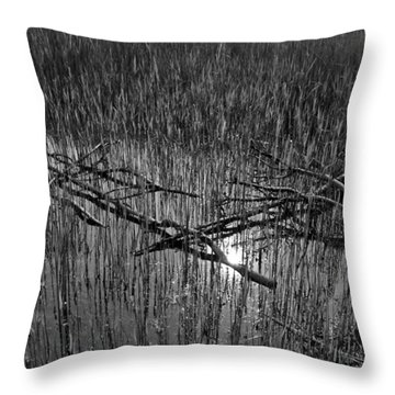 Reeds And Tree Branches Throw Pillow by David Pyatt