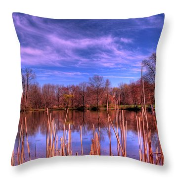Reeds Throw Pillow by Paul Ward