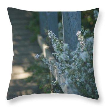 Reedsburg Dam Throw Pillow