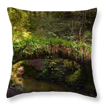 Reelig Bridge And Grotto Throw Pillow