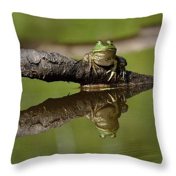 Reflecktafrog Throw Pillow