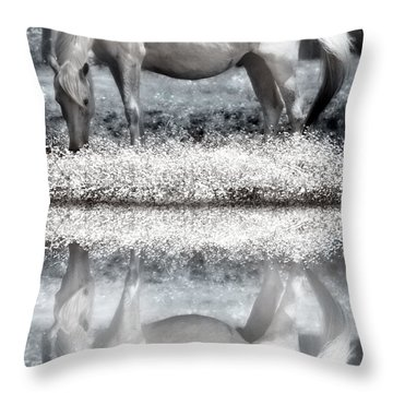 Throw Pillow featuring the digital art Reflecting Dreams by Mary Almond