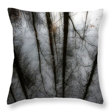 Reflecting On A Winter Day Throw Pillow by Winston Rockwell