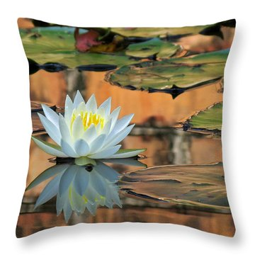 Throw Pillow featuring the photograph Reflecting Pond by Deborah Smith