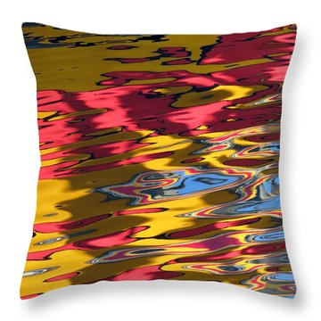 Throw Pillow featuring the photograph Reflection Abstraction by Darleen Stry