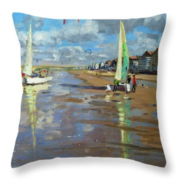 Reflection Throw Pillow by Andrew Macara