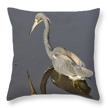 Throw Pillow featuring the photograph Reflection by Anne Rodkin