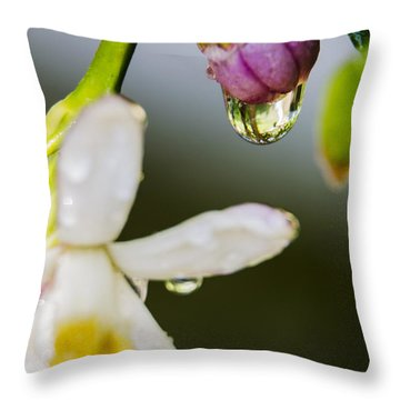 Throw Pillow featuring the photograph Reflection by Marta Cavazos-Hernandez