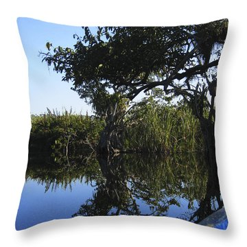 Reflection Of Arched Branches Throw Pillow by Anne Mott