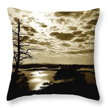 Reflection Of Moonlight On Squam Throw Pillow by Rick Frost