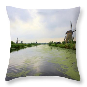 Reflection Of Sky At Kinderdijk Throw Pillow by Carol Groenen