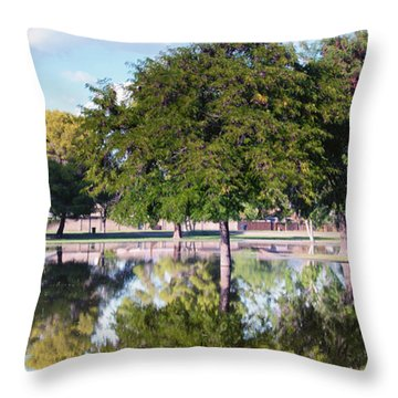 Reflections Throw Pillow by Diane Wood