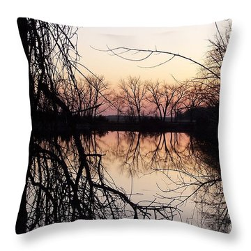 Reflections Throw Pillow by Dorrene BrownButterfield