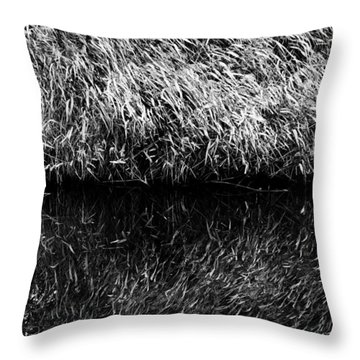 Reflections Throw Pillow by Fabrizio Troiani