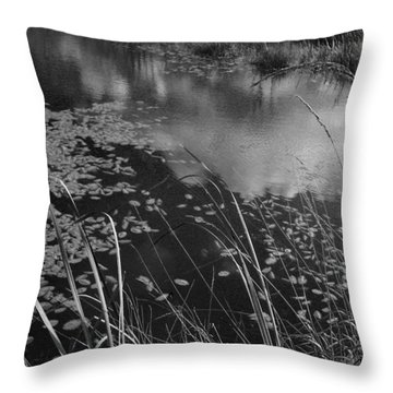 Throw Pillow featuring the photograph Reflections In The Pond by Kathleen Grace
