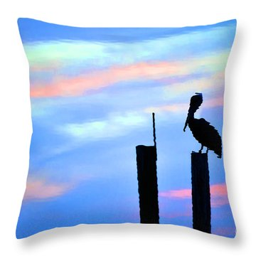 Throw Pillow featuring the photograph Reflections In Water With Pelican by Dan Friend