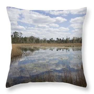 Throw Pillow featuring the photograph Reflections by Lynn Palmer