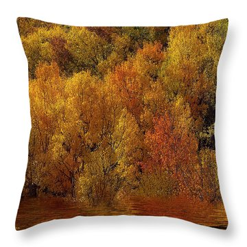 Reflections Of Autumn Throw Pillow by Carol Cavalaris