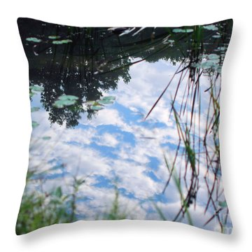 Reflections Of The Sky Throw Pillow