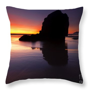 Reflections Of The Tides Throw Pillow by Mike  Dawson