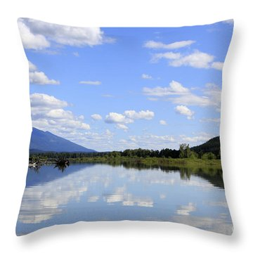 Throw Pillow featuring the photograph Reflections On Swan Lake by Nina Prommer