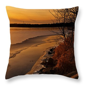 Refreeze Throw Pillow