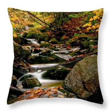 Refreshing Thought Throw Pillow by Aron Kearney