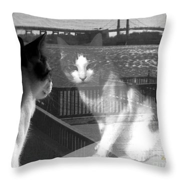 Reggie Reflected Throw Pillow