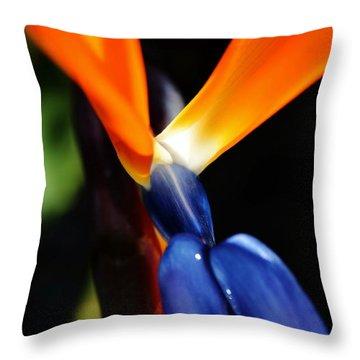 Throw Pillow featuring the photograph Reginae Strelitzia by Werner Lehmann