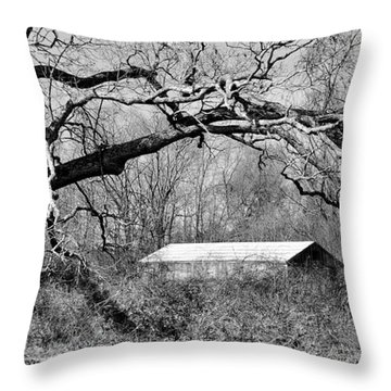 Relax Under My Tree Throw Pillow