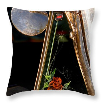 Remember Back When Throw Pillow