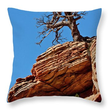 Remnants Of A Struggle Throw Pillow by Christopher Holmes