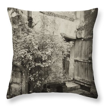 Throw Pillow featuring the photograph Renovation by Hugh Smith