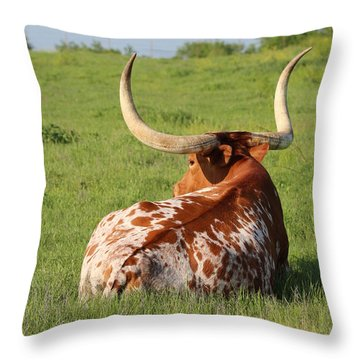 Rest Throw Pillow by Elizabeth Hart