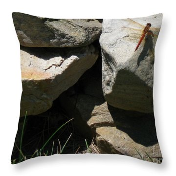Throw Pillow featuring the photograph Resting Dragonfly  by Nancy Patterson
