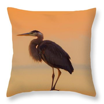 Resting Heron Throw Pillow