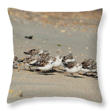 Resting Sandpipers Throw Pillow