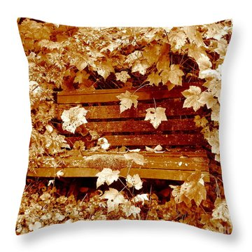 Throw Pillow featuring the photograph Resting Too by Kathy Bassett