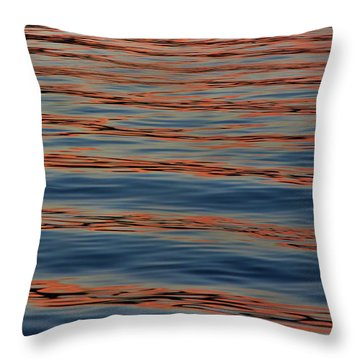 Throw Pillow featuring the photograph Reverential Respect by Britt Runyon