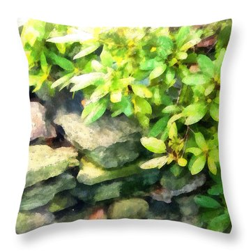 Rhodas And Stones Throw Pillow