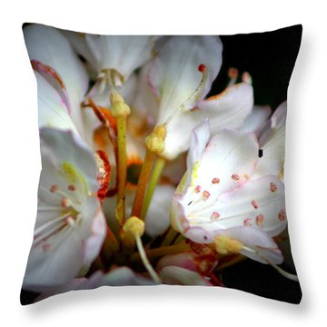 Rhododendron Explosion Throw Pillow