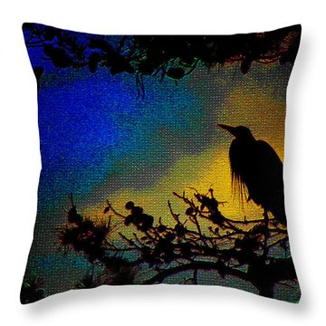Richly Colored Night  Throw Pillow