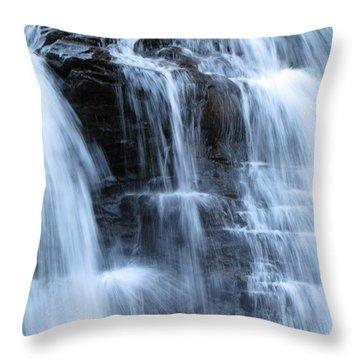 Ricketts Glen Waterfall 3942 Throw Pillow by David Dehner
