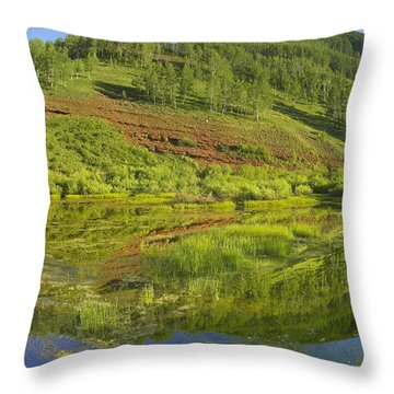 Rico Mountains Reflected In Dolores Throw Pillow by Tim Fitzharris
