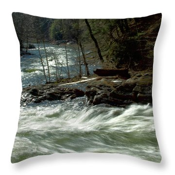 Riding The River Throw Pillow by Karol Livote