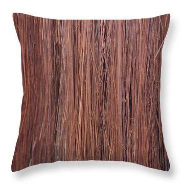 Right Whale Baleen Throw Pillow by Ted Kinsman