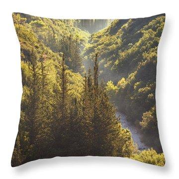 Rindomo Gorge Throw Pillow