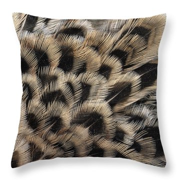Ring-necked Pheasant Phasianus Throw Pillow by Flip De Nooyer