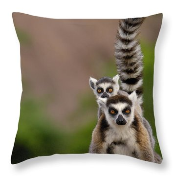 Ring-tailed Lemur Lemur Catta Mother Throw Pillow by Pete Oxford