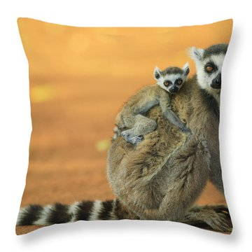 Ring-tailed Lemur Mother And Baby Throw Pillow by Cyril Ruoso